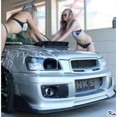 LIP for bumper